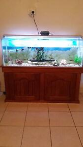 4ft fish tank with stand Elizabeth Downs Playford Area Preview