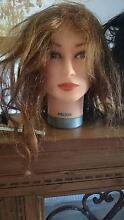 Mannequin (trainee hairdressers) Gawler Gawler Area Preview