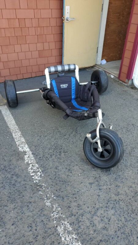 Flexifoil Powerkite Buggy With Wide Axle And Buggy Bag Seat AND buggy Rack !