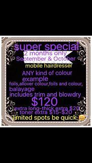 Mobile hairdresser  this offer includes November and December