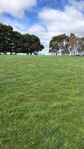 Land for Rent - Agistment Tylden Macedon Ranges Preview