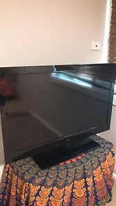 Tv, vivid. barely used Maryland Newcastle Area Preview