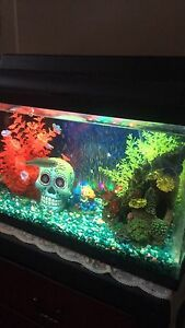 Fish tank 30 gallon and stand