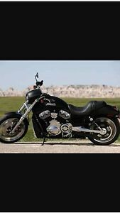 HARLEY DAVIDSON NIGHT ROD Alexander Heights Wanneroo Area Preview