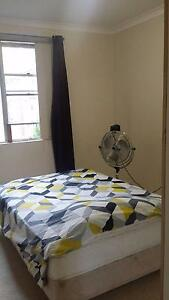 BEAUTIFUL FULLY FURNISHED single room for rent - available now Strathfield Strathfield Area Preview
