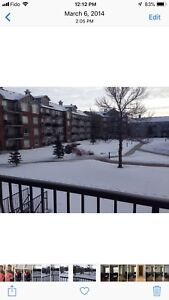 2 bedrooms condo for rent