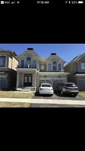 House for rent in Brampton (Steels & financial dr.)