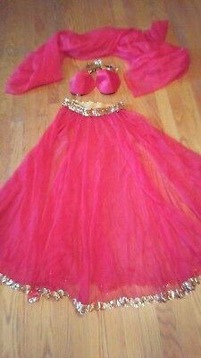 Harem Belly dancer Genie costume reenactment Halloween outfit  1x1147 - Harem Dancer Costume