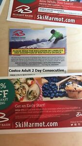 Costco two day consecutive pass