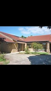 House for rent 300 pw South Plympton Marion Area Preview