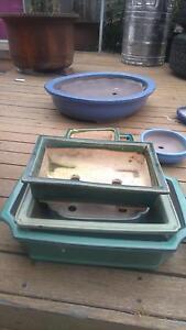 Bonsai pots Mentone Kingston Area Preview