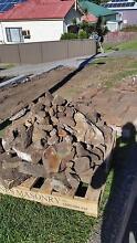 Bush rock/ sandstone Woonona Wollongong Area Preview