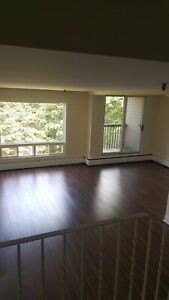 CLAYTON PARK, LARGE 2 BDRM 2 LEVEL UNIT SEPTEMBER 1ST