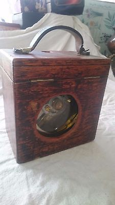 Toule Imperator Pigeon Clock in Wooden Box