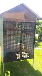 Aviary cage Para Hills Salisbury Area Preview