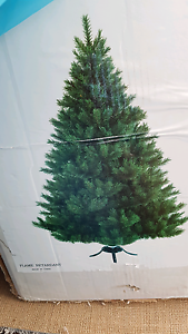 Christmas Tree Putney Ryde Area Preview