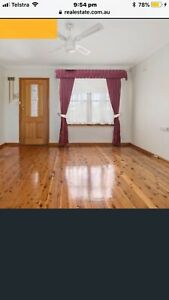 1 bedroom granny flat for rent $250 a week Liverpool area