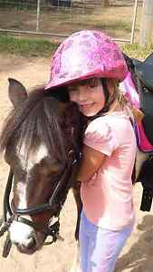 Great 1st pony Mulgoa Penrith Area Preview