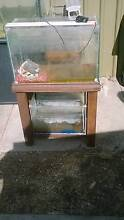 2 fish tanks comes with stand and led light and stones Klemzig Port Adelaide Area Preview