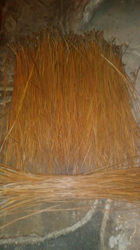 Long leaf pine needles from alabama for basket weaving...  dry 1 1/4 lbs