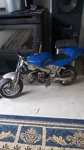 Pocket rocket motorbike Bundoora Banyule Area Preview