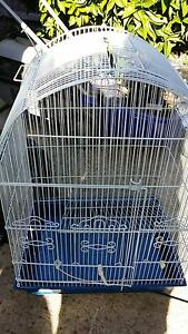 selling bird cage Dunlop Belconnen Area Preview