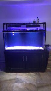 Aquarium 90 gallons et sump 33 gallon