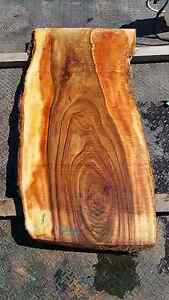 ***Camphor Laurel Slabs!! Special*** Cooranbong Lake Macquarie Area Preview