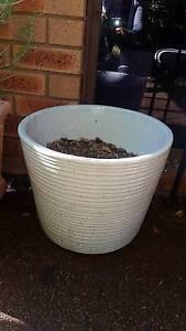 Large light grey pot Claremont Nedlands Area Preview