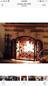 Fireplace screen-cast iron