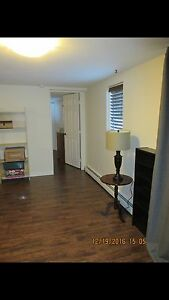 Renovated 1 Bedroom Apartment off of PV road