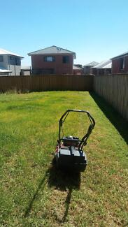 Cheap Lawn Cutting hedge trimming