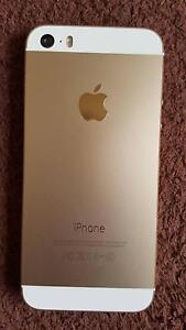 iphone 5S 16G Gold unlocked Box Hill South Whitehorse Area Preview