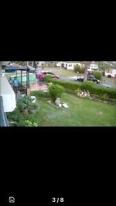 Stolen 8x5 trailer St Marys Penrith Area Preview