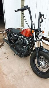 """16"""" sportster apes and braided cables"""