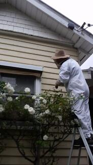 Pest Controller Wasp Exterminator - Serving all suburbs, same day