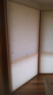 Duette/ honeycomb blind