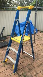 Platform safety ladder Heathcote Sutherland Area Preview