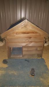 BIG CHOOK HOUSE OR DOG KENNEL Singleton Singleton Area Preview