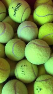 Second hand used tennis balls Stirling Stirling Area Preview