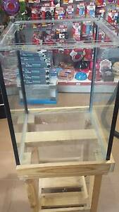2 ft Tall Terrarium with Wooden Stand - NEW Airport West Moonee Valley Preview