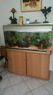 Aqua One compleat 4ft fish tank + stand and accessories Nambour Maroochydore Area Preview