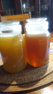 BEST HONEST LOCAL HONEY YOU EVER TASTE DIRECT FROM OUR BACKYARD*