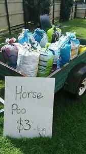 Horse Poo/Manure for gardens & compost bins Maroochydore Maroochydore Area Preview