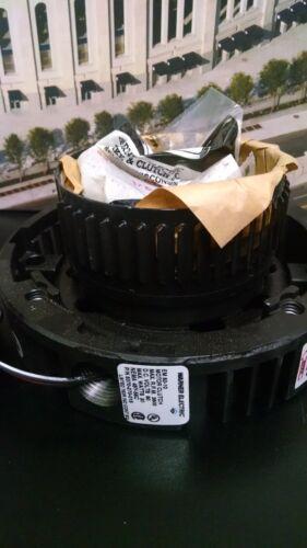 Warner 5370-270-015  EM-50-10 90VDC Motor Clutch 48Y/56C Motor Frame