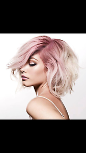 Hair and Beauty Salon for quick sale Lake Macquarie. Newcastle Newcastle Area Preview