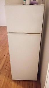 FRIDGE FOR SALE Wiley Park Canterbury Area Preview