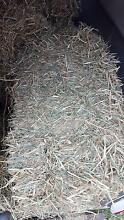 Oaten hay $12 per bale 6-8 bales available Victoria Point Redland Area Preview