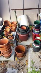 Pots. Empty. Ardross Melville Area Preview