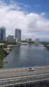 1 share rooms girls ( condor apartments) Surfers Paradise Gold Coast City Preview